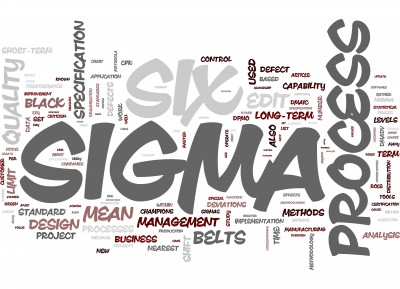 Program Management Consulting Services is a service offered by